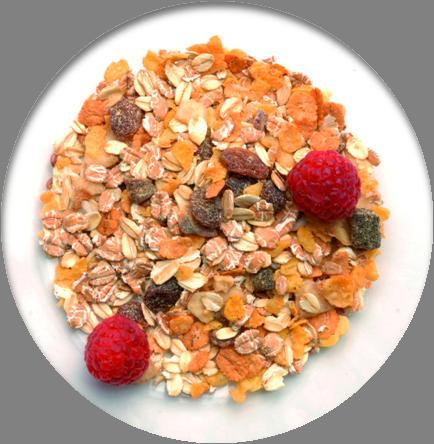 Výsledok vyhľadávania obrázkov pre dopyt zdravá výživa png gif