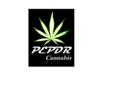 PEPDR Cannabis