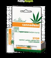 Konopný balzam na pery CANNADENT Cannaderm 4,5g